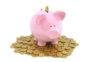 Spouse contributions splitting
